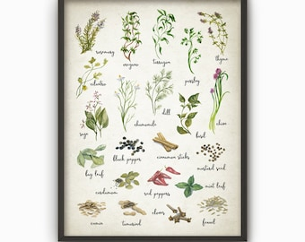 Herbs and Spices Watercolor Kitchen Wall Art Poster - Rustic Kitchen Print - Cooking Art Print Kitchen Wall Decor - Gift Idea for Her (B242)