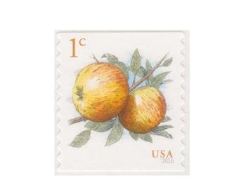 20 Unused US Postage Stamps - 2016 1c Apples - Item No. 5037