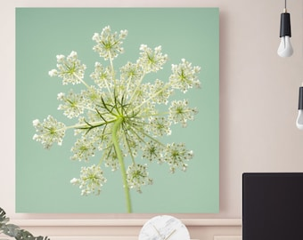 Queen Anne's Lace Canvas Print,  Botanical Print, Wall Art, Canvas Photography, Nature, Teal, Aqua, Mint Green, Chartreuse -NO. 1140-2