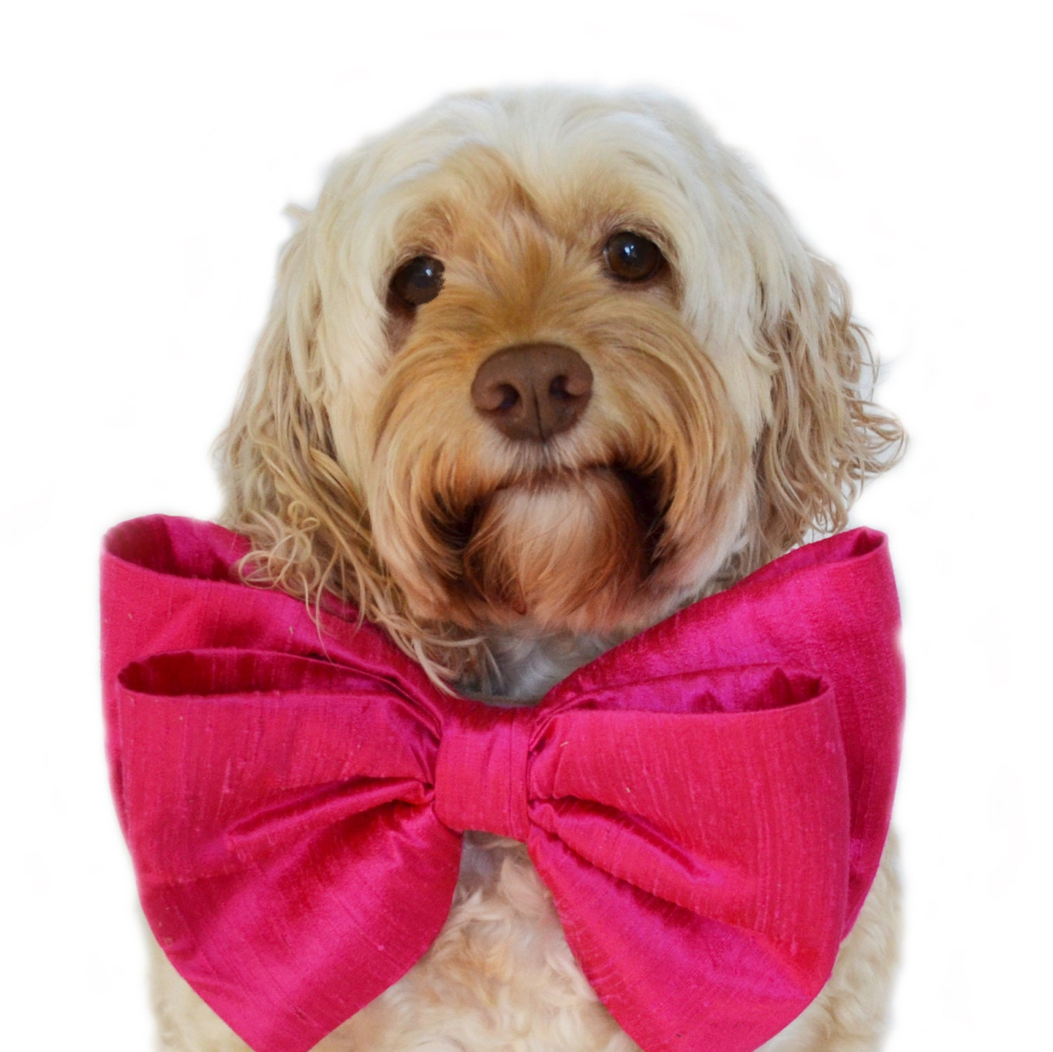 Pink Bow Tie Collar Big Dog Oversized Birthday For Dogs Party