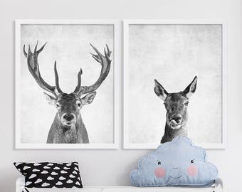 Deer Prints Buck and Doe Two Print Set Baby Room Art Baby Animal Nursery Prints Grey Nursery Decor Animal Portrait Nursery Art Kids Room Art