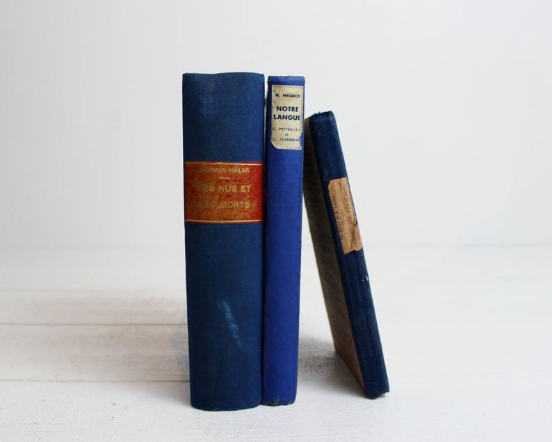 Set of 3 French Blue Books for Decor Books Vintage Books by image 0