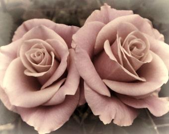 Pastel Roses Fine Art Print