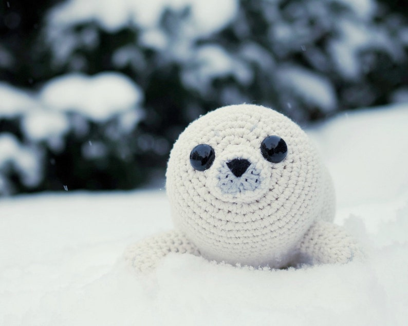 PATTERN  Bubbly the Baby Seal crochet amigurumi  in image 0