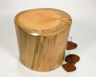 Aspen Tree Cremation Urn Small, Wood Cremation Urn for Ashes.  Memorial, Funeral & Burial Urns.  Wooden Urn Made in Colorado.  30 lbs.