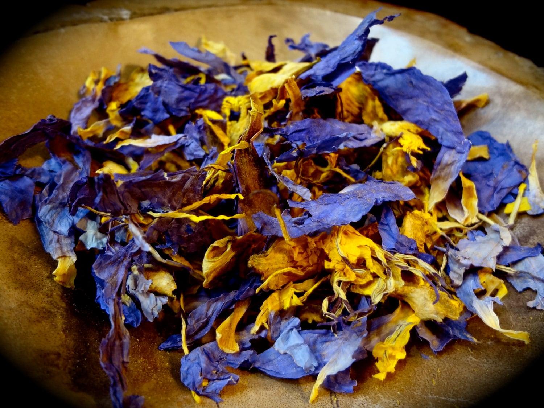 Blue lotus nymphaea caerulea whole flower 1 oz etsy zoom izmirmasajfo