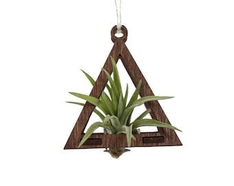 air plant ornament >> triangle >> walnut