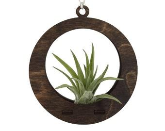 air plant ornament >> circle >> walnut
