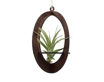 air plant hanger >> oval >> walnut