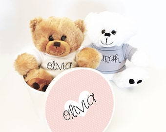 Personalized Teddy Bear with Personalized Gift Box