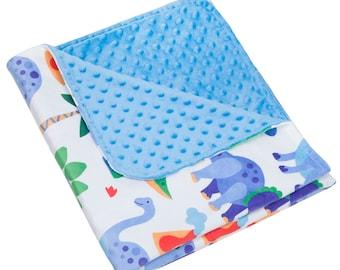 Dinosaur Land Plush Blanket