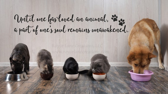 until one has loved an animal pet decal / cat wall decals / | etsy