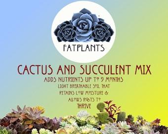 Premium Cactus and Succulent Soil