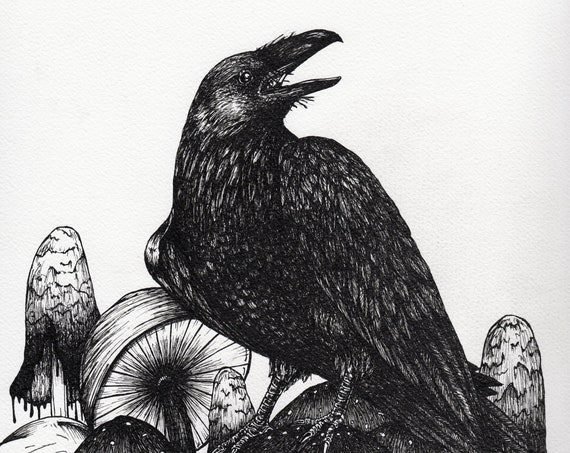 Raven and Mushrooms Print