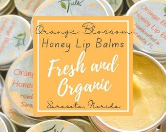 Honey Lip Balm - BEST SELLER!