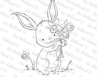 Bunny with daffodils
