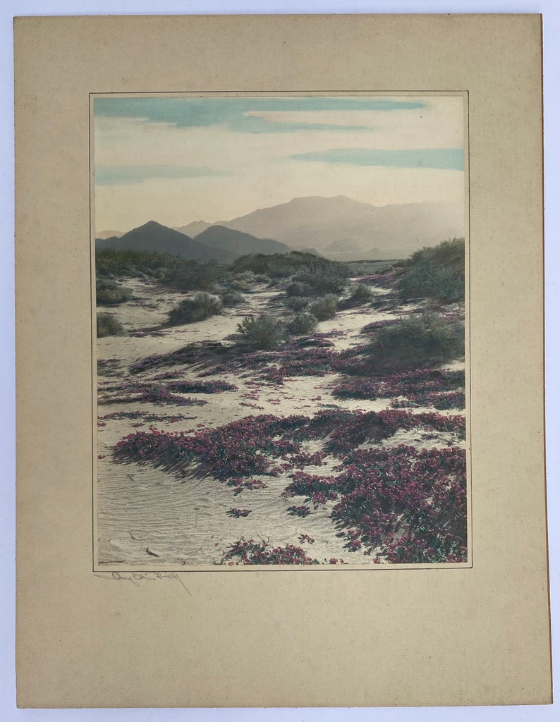 Avery Edwin Field Signed colored desert Photograph 1883-1955