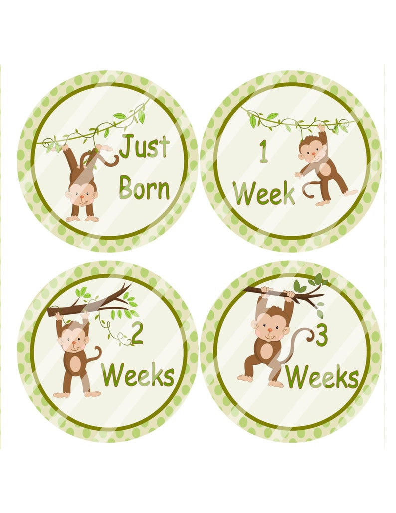 Swell Monkey Baby Stickers Baby Growth Stickers Monthly Milestone Stickers Diy Birthday Props Infant Stickers Boy Sticker Printables 4 Less Interior Design Ideas Lukepblogthenellocom
