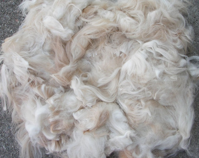 Fibre and wool