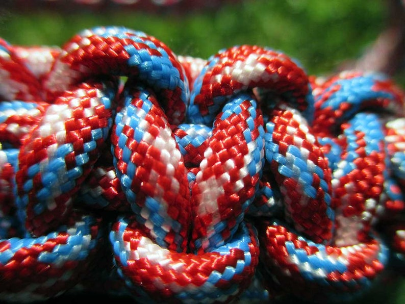 Rebel Paracord Halter with 6/' Lead