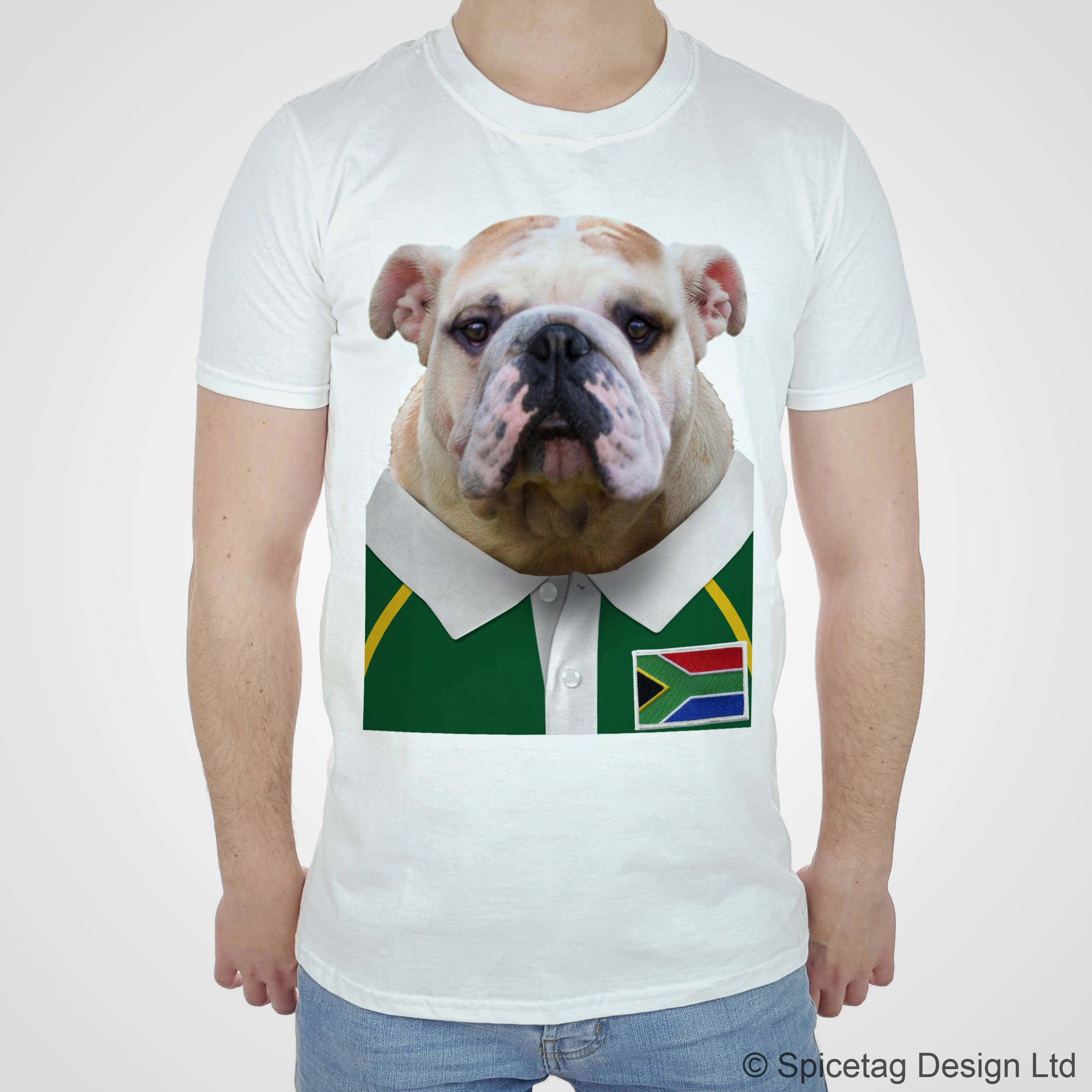Rugby Shirt For Dog: South Africa Rugby Bulldog T-shirt Bull Dog Tshirt Puppy