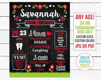 Ladybug First Birthday Milestone Chalkboard Sign, Printable Birthday Keepsake, 1st Birthday Gift, Digital file purchase