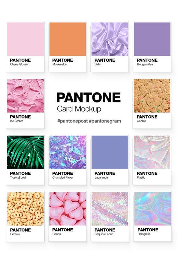 Pantone color cards mockup pantone template creative etsy image 0 reheart Images