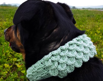 Crocodile dog scarf crochet pattern that slides over collar PDF and FREE Spider mums crochet pattern