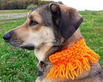 Orange halloween dog scarf and collar sleeve crochet pattern shown in pumpkin PDF and FREE Spider mums crochet pattern