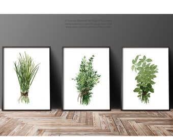 Herbs Bundle Thyme Basil Chive Set 3 Herb Art Prints Green Kitchen Wall  Illustration, Medicinal Plants Botanical Home Dining Room Decor
