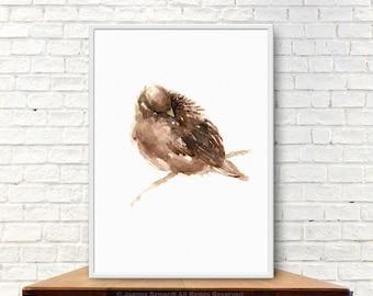 Brown Bird Art Print Animals Home Decor Sparrow Watercolor Painting Birdies Gift Idea Shabby Chic Wall Decor  sc 1 st  Etsy & Sparrow wall art | Etsy