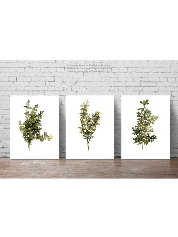 Thyme Watercolor Set 3 Forest Green Painting, Colorful Plant Motive on kitchen ideas for accessories, kitchen ideas for walls, kitchen ideas wood, kitchen ideas for red, kitchen ideas for wallpaper, kitchen ideas for design, kitchen ideas for windows, kitchen ideas for painting,
