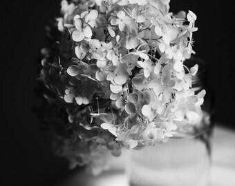 Black and White Floral Print, Flower Photo, Hydrangea Art, Dreamy Flower Print, 3 Options, Minimalist Decor, Bedroom Art, Bath Art, Spa Art