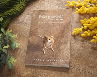 Short Stories from a Felted Mouse, Bergamot Mouse, Illustrated Artists Book, Animal Humor