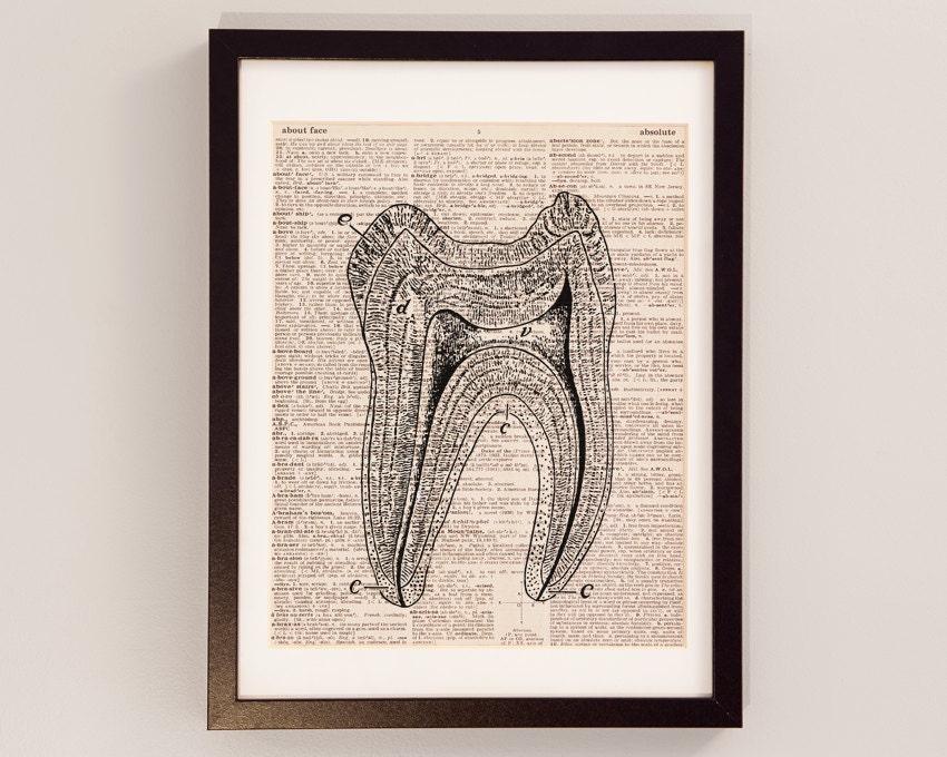 Zahn-Print Anatomy Art Print auf Jahrgang Wörterbuch | Etsy