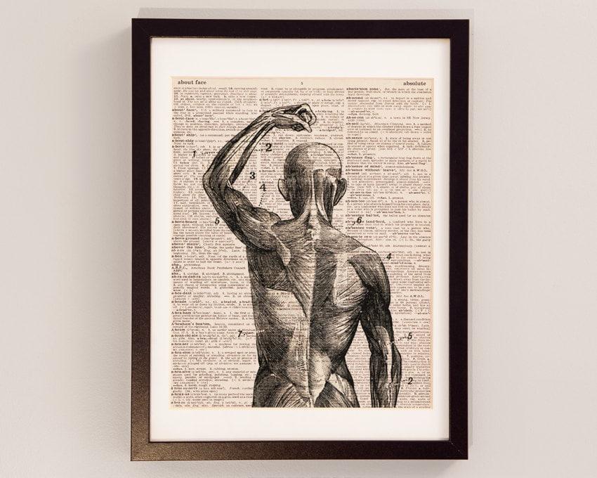 Músculos superficiales Diccionario arte impresión anatomía | Etsy