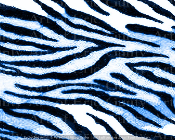 Blue Zebra Print Birthday - Edible Cake and Cupcake Topper For Birthday's and Parties! - D24124