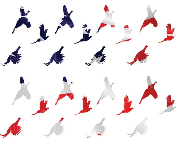 Patriotic Pheasant Hunting - Birthday Background - Side Strips ~ Edible 2D Fondant Birthday Cake Side Toppers ~ D22632