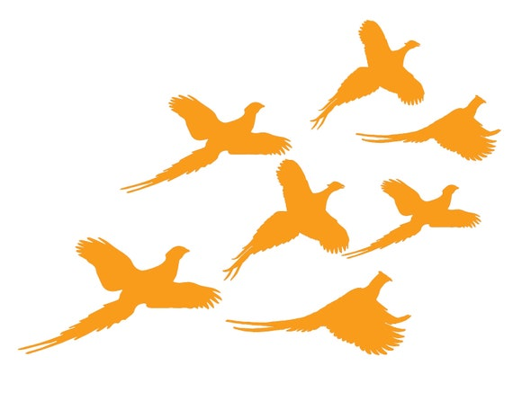 Orange Quail Hunting Birthday ~ Edible 2D Fondant Birthday Cake/Cupcake Topper ~ D24684