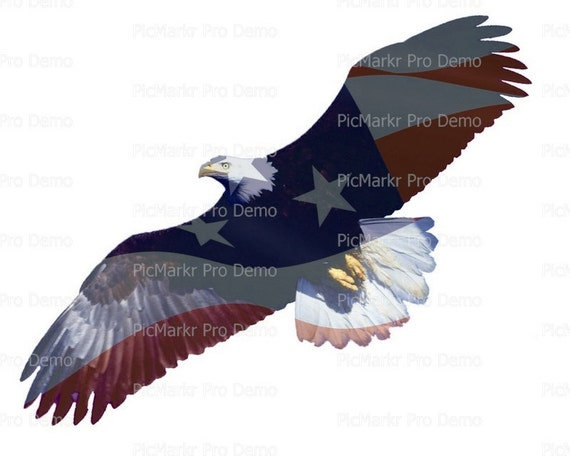 Flying American Bald Eagle ~ Edible 2D Fondant Birthday Cake/Cupcake Topper ~ D20896