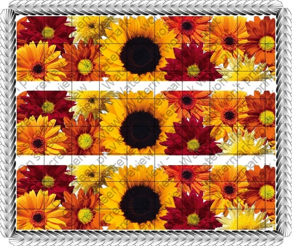 Fall Flowers - Birthday Background - Side Strips ~ Edible 2D Fondant Birthday Cake Side Toppers ~ D1444