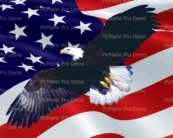 Bald Eagle American Flag Background ~ Edible 2D Fondant Birthday Cake/Cupcake Topper ~ D20900