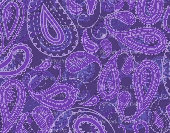 Purple Paisley Birthday - Edible Cake and Cupcake Topper For Birthday's and Parties! - D20435