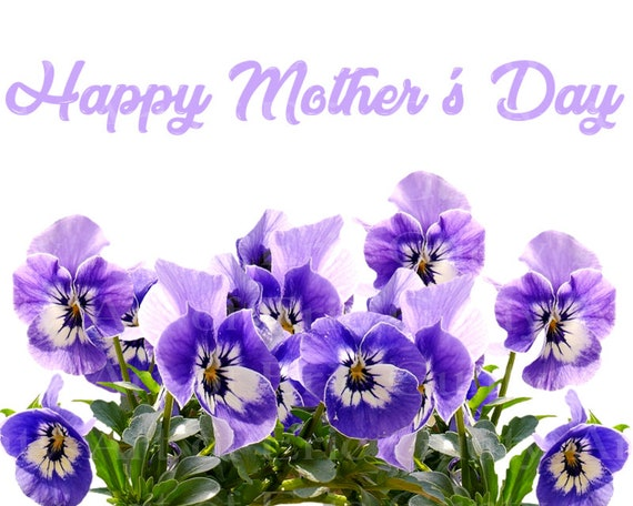 Purple Flowers Happy Mothers Day - Edible Cake and Cupcake Topper For Birthdays and Parties! - D24014