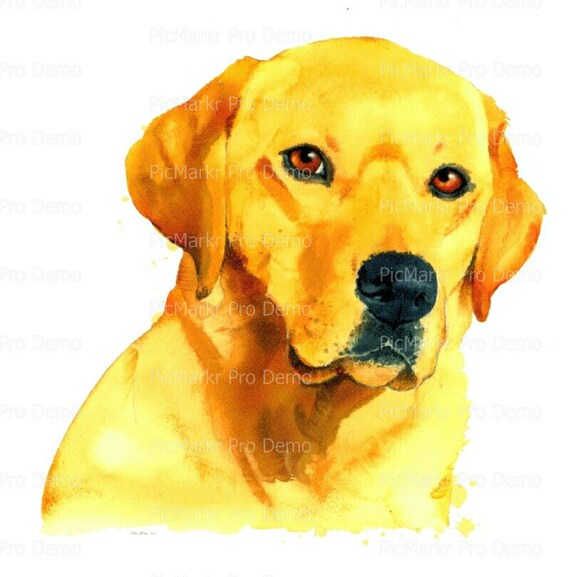 Yellow Labrador Retriever Dog Birthday ~ Edible 2D Fondant Birthday Cake/Cupcake Topper ~ D20130