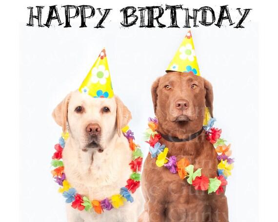 Hawaiian Luau Dogs Happy Birthday ~ Edible 2D Fondant Birthday Cake/Cupcake Topper ~ D22872