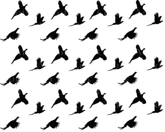 Pheasant Hunting - Birthday Background - Side Strips ~ Edible 2D Fondant Birthday Cake Side Toppers ~ D22624