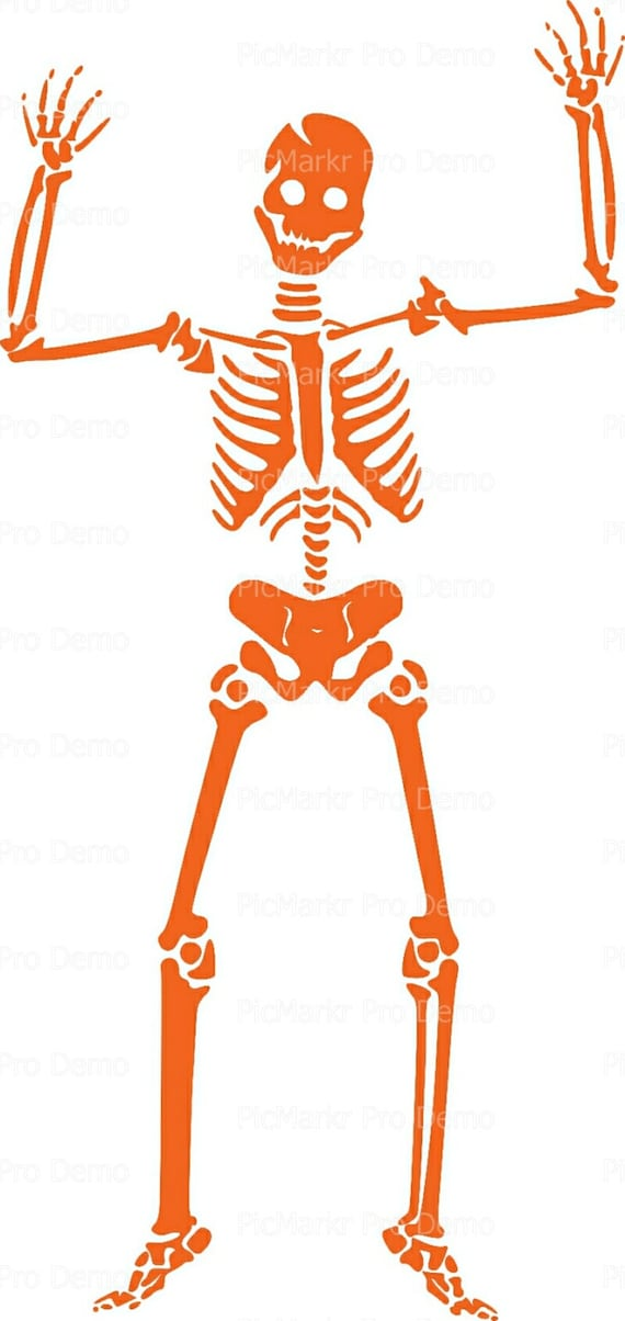 Orange Skeleton Halloween - Edible Cake and Cupcake Topper For Birthday's and Parties! - D5860