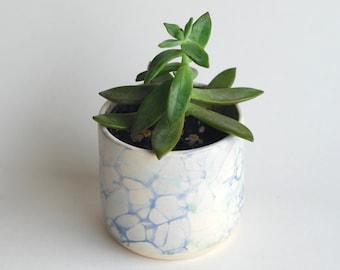 Succulent Planters - Handmade Ceramic Planters - Clay Planters - Flower Pot - Cactus Planter - Bubble Glaze