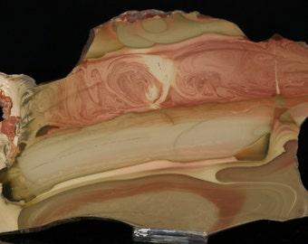 Beautiful Large Polished Willow Creek Jasper Slab